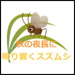秋の夜長に鳴り響く~スズムシの生態・飼育方法を紹介